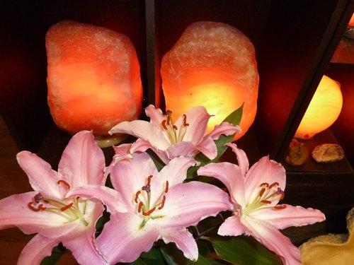 喜馬拉雅山玫瑰鹽燈  日本輻射飄台,玫瑰鹽燈關心您-