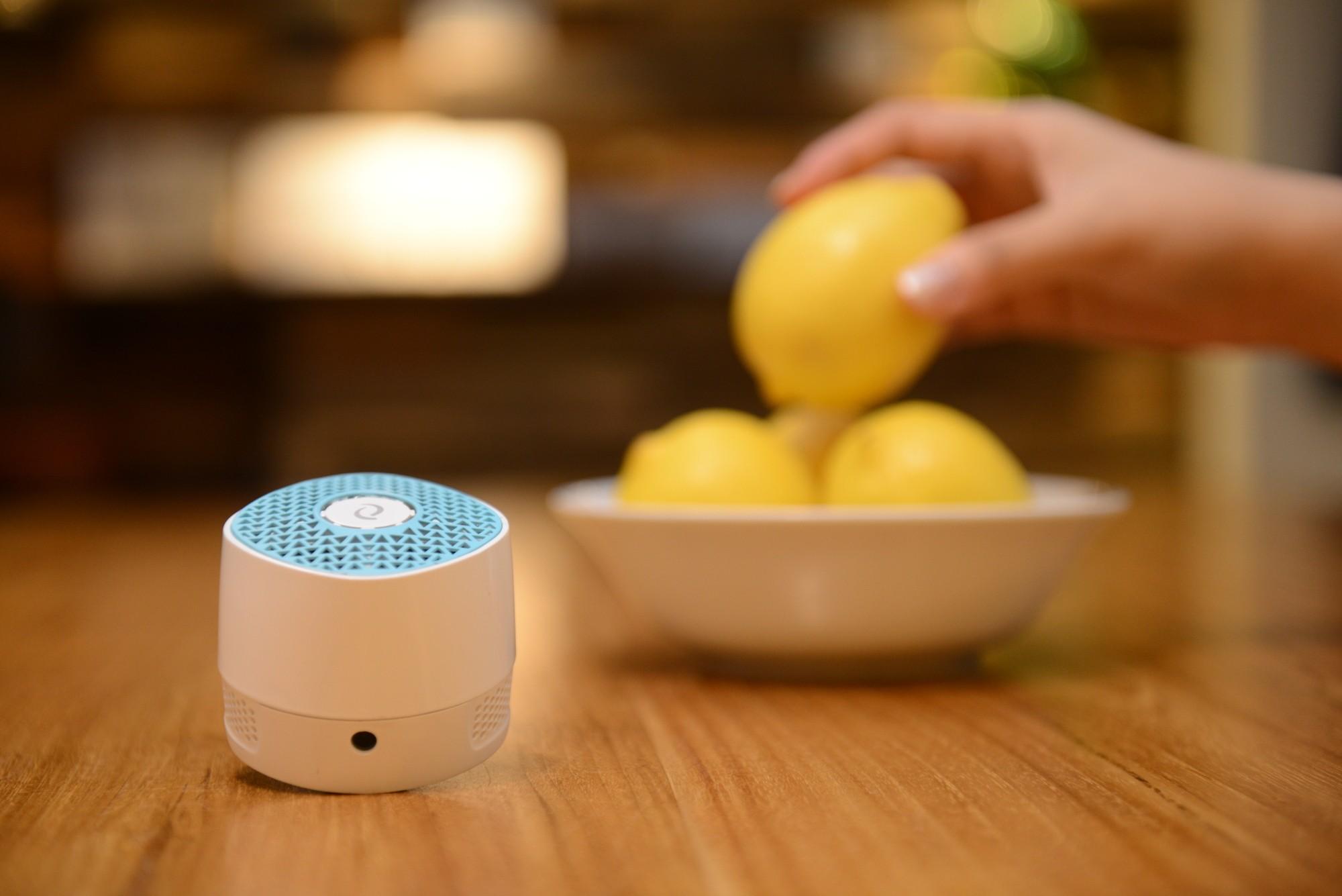 國際貓家~VentiFresh 智能UV光觸媒智能除臭器