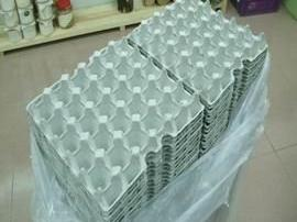 紙蛋盒.200個[單位:組]